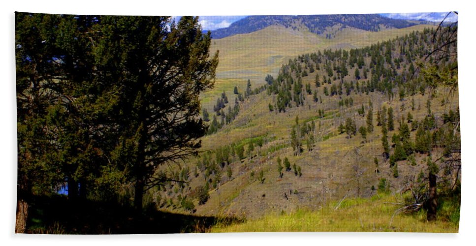 Yellowstone National Park Hand Towel featuring the photograph Along The Hell Roaring Creek Trail by Marty Koch