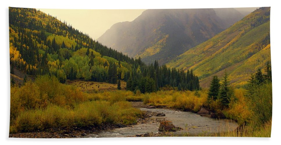 Colorado Bath Sheet featuring the photograph Alpine Loop Fall by Marty Koch