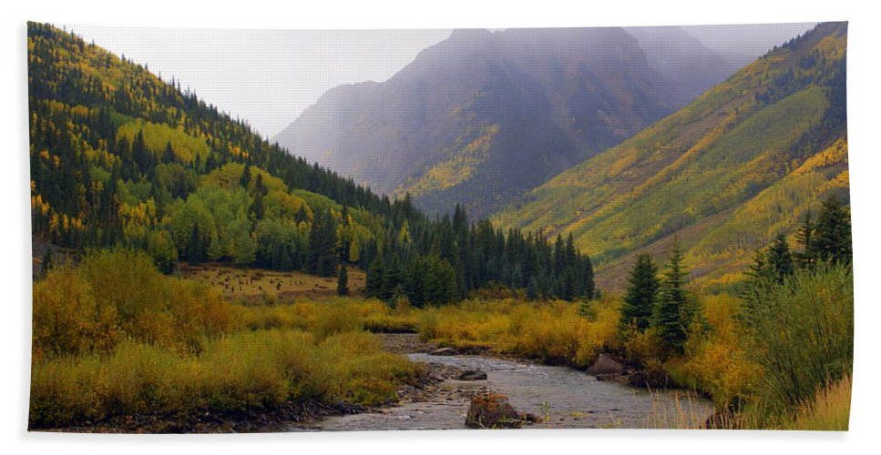 Colorado Hand Towel featuring the photograph Alpine Loop Road by Marty Koch