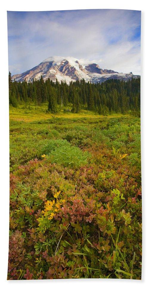 Mt. Rainier Hand Towel featuring the photograph Alpine Meadows by Mike Dawson
