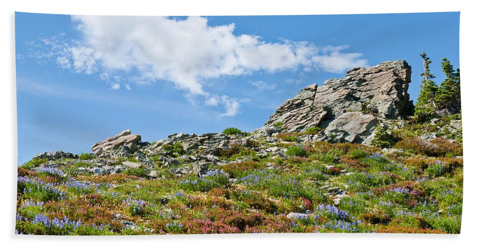 Alpine Hand Towel featuring the photograph Alpine Rock Garden by Jeff Goulden