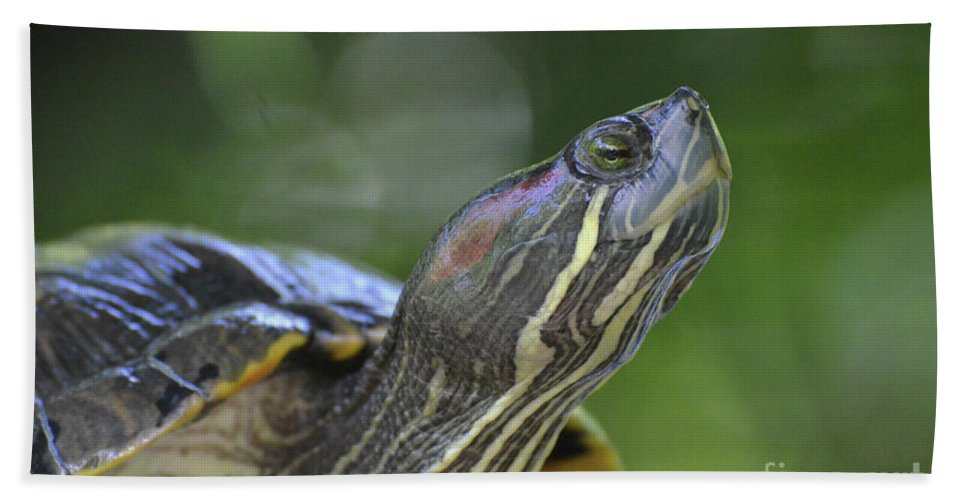 Painted-turtle Bath Sheet featuring the photograph Amazing Close-up Painted Turtle Resting by DejaVu Designs