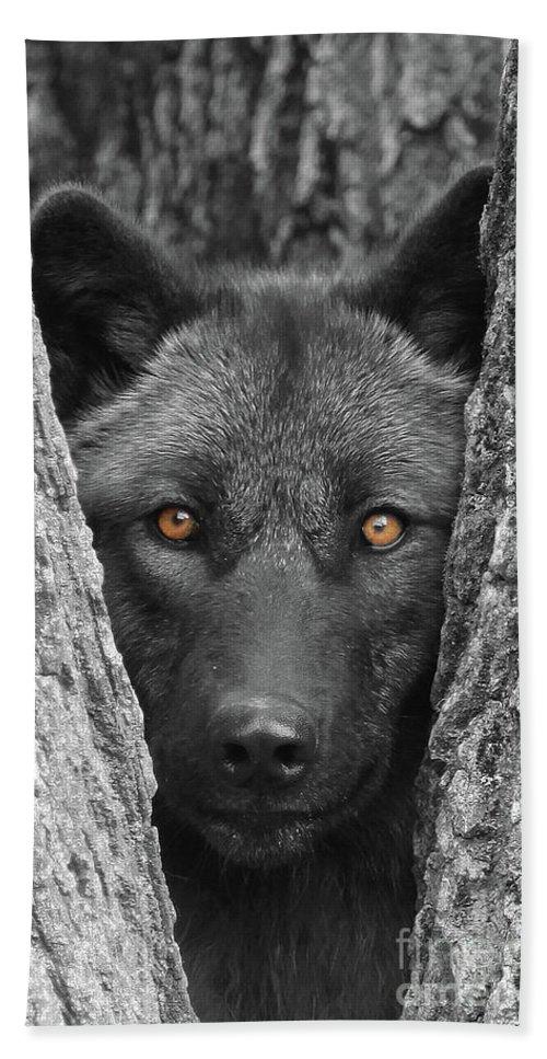 Wolf Bath Sheet featuring the photograph Amber by Shari Jardina