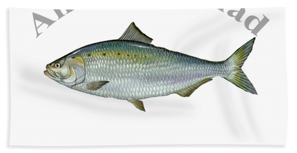American Shad Hand Towel featuring the digital art American Shad by T Shirts R Us -