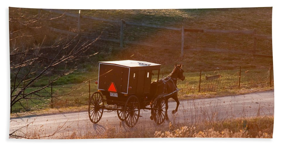 Amish Hand Towel featuring the photograph Amish Buggy Afternoon Sun by David Arment