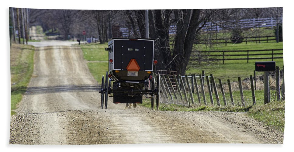 Amish Hand Towel featuring the photograph Amish Buggy March 2016 by David Arment