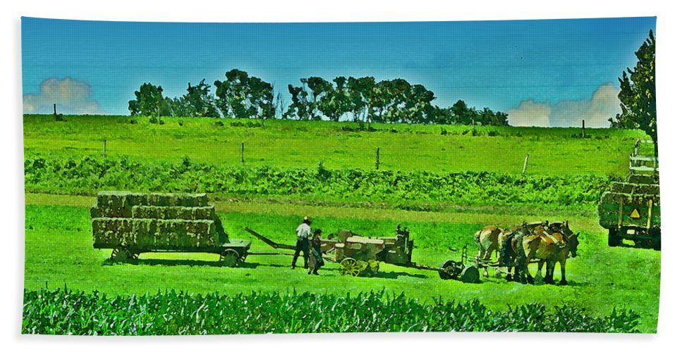 Lancaster County Bath Sheet featuring the photograph Amish Gathering Hay by Bill Cannon