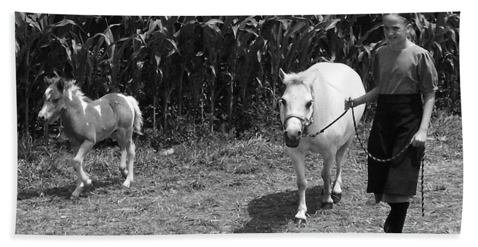 Amish Girl With Her Colt Bath Sheet featuring the photograph Amish Girl With Her Colt by Eric Schiabor