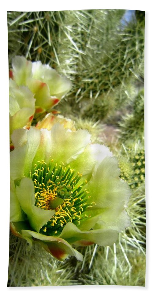 Cactus Bath Sheet featuring the photograph Among The Thorns 3 by Nelson Strong