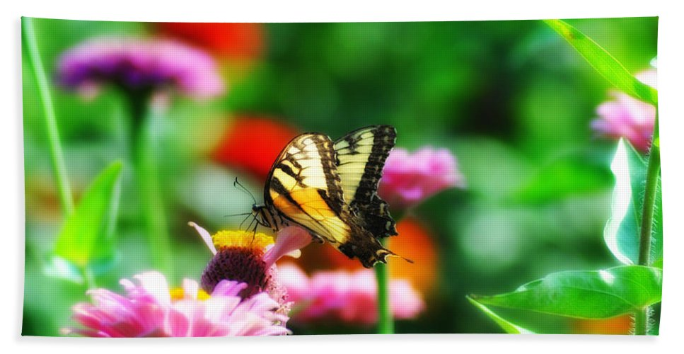 Butterfly Bath Sheet featuring the photograph Amongst The Flowers by Bill Cannon