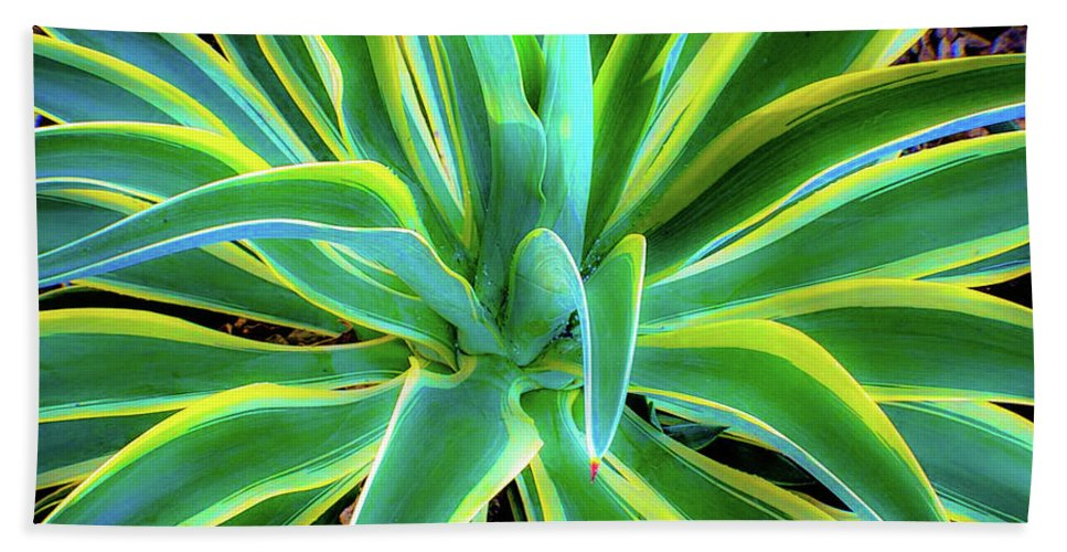 Agave Bath Towel featuring the photograph An Agave In Color by D Davila