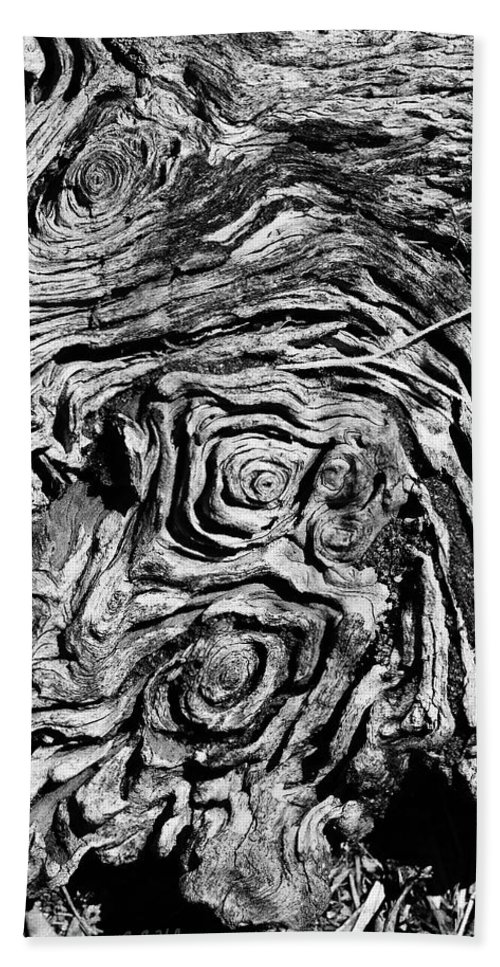 Tree Bath Towel featuring the photograph Ancient Stump by Christopher Holmes