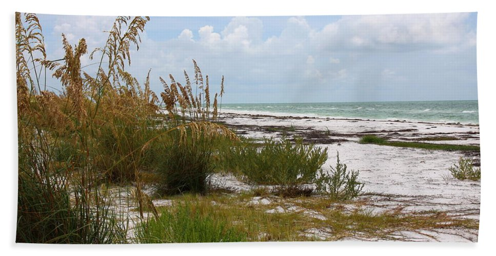 Beaches Hand Towel featuring the photograph Anclote Key Preserve by Barbara Bowen