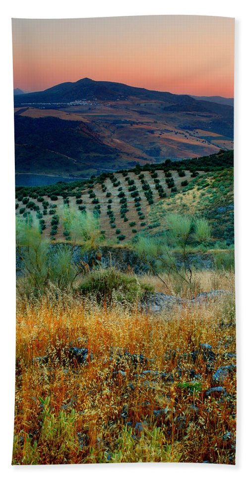Andalucia Bath Towel featuring the photograph Andalucian Landscape by Mal Bray