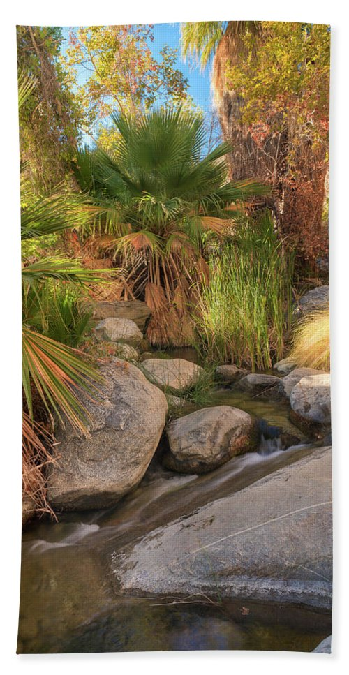 Waterfall Hand Towel featuring the photograph Andreas Canyon Babble by Scott Campbell