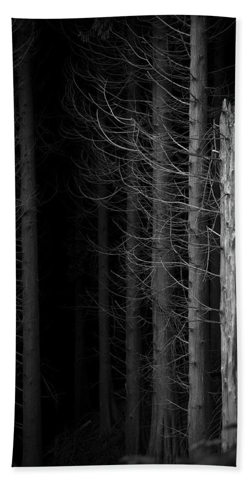 Tree Bath Sheet featuring the photograph Angst by Dorit Fuhg