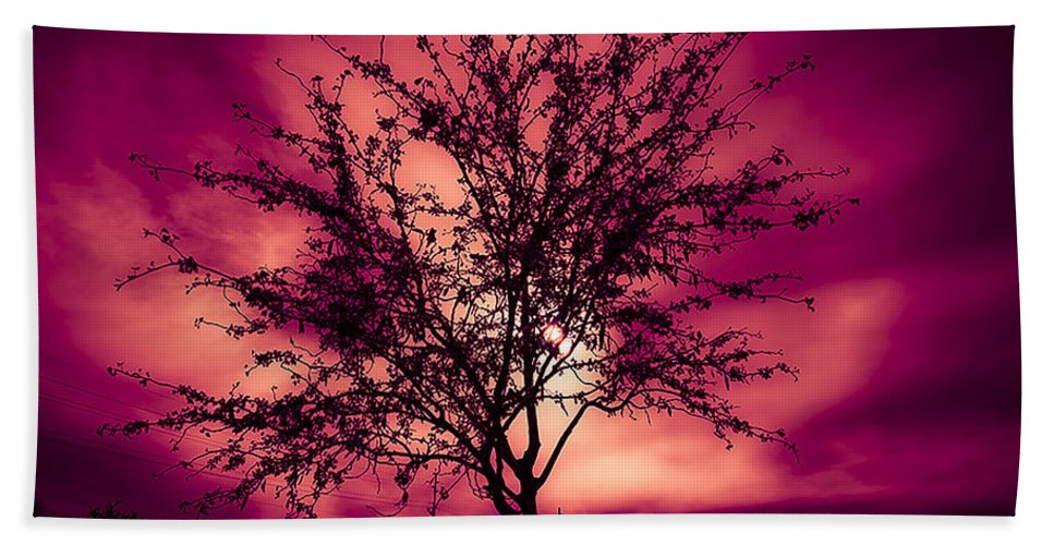 Hand Towel featuring the photograph Another Day by James Busse