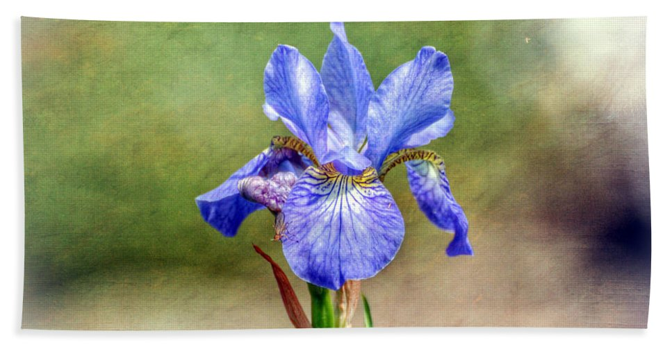 Iris Hand Towel featuring the photograph Another Word For Rainbow by Kerri Farley