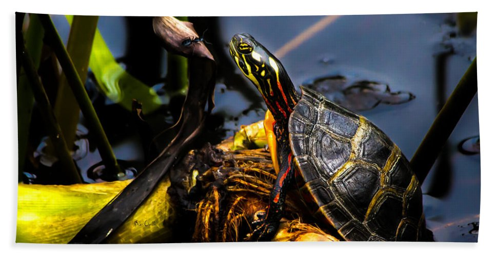 Turtles Bath Towel featuring the photograph Ant Meets Turtle by Bob Orsillo