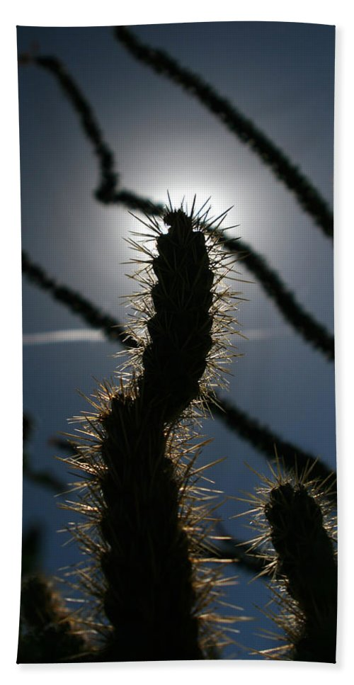 Cactus Bath Sheet featuring the photograph Anza Borrego Cholla Sillouette by Chris Brannen