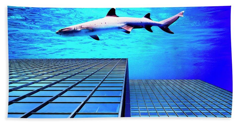Shark Bath Sheet featuring the photograph Apex Predator by Dominic Piperata