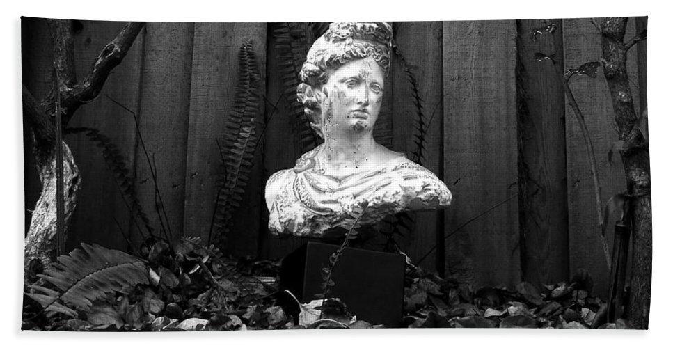 Apollo Bath Sheet featuring the photograph Apollo In The Backyard by David Lee Thompson