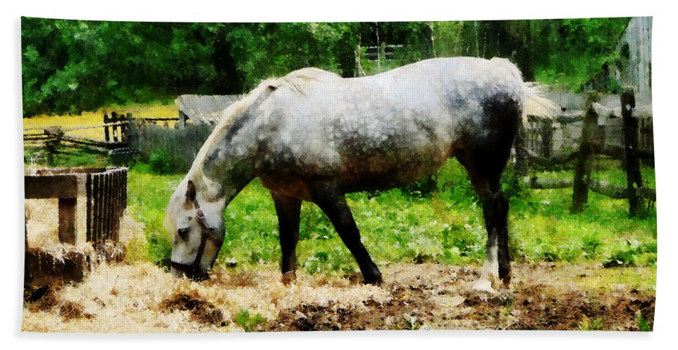 Horse Bath Sheet featuring the photograph Appaloosa Eating Hay by Susan Savad