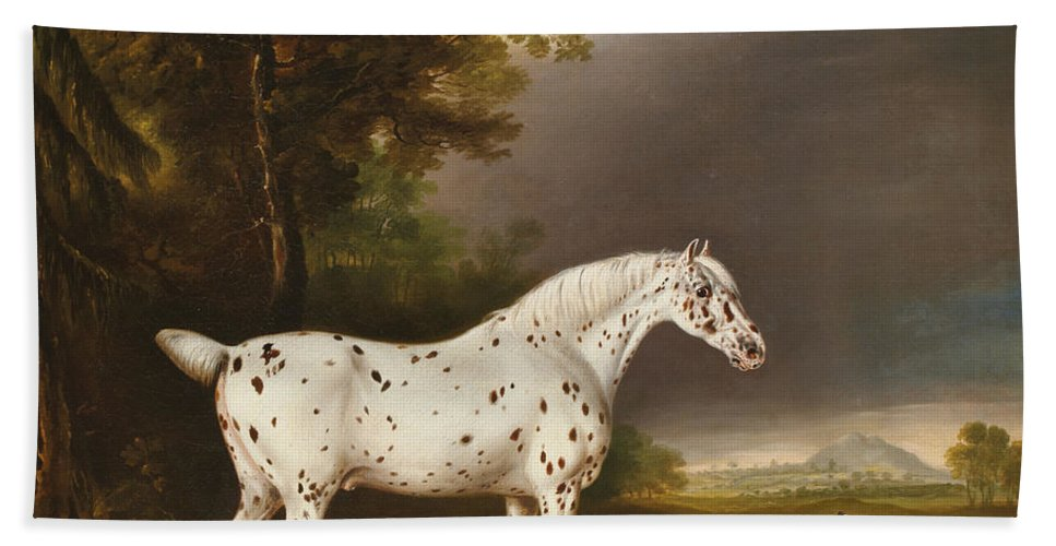 Appaloosa Hand Towel featuring the painting Appaloosa Horse And Spaniel by Thomas Weaver