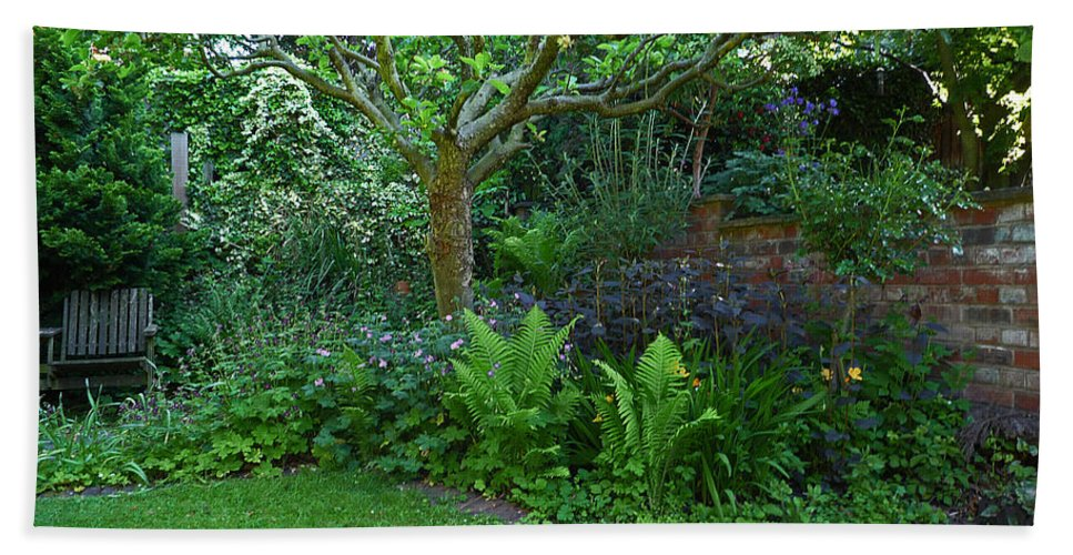 Garden Bath Sheet featuring the photograph Apple And Fern by Charles Stuart