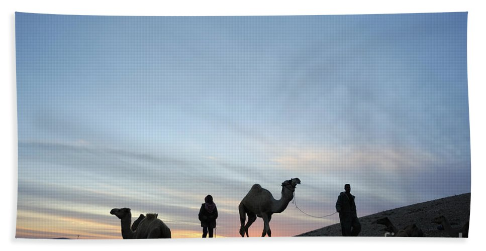 Middle East Hand Towel featuring the photograph Arabian Camel At Sunset by PhotoStock-Israel