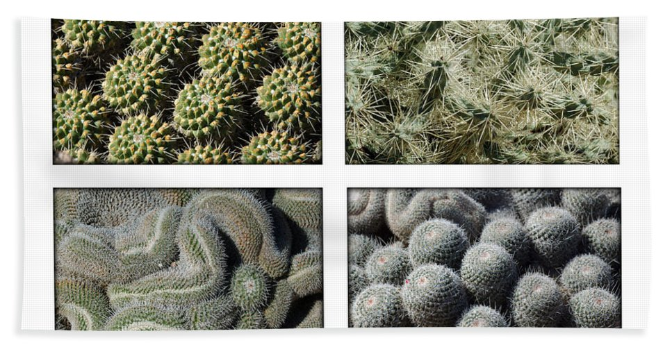 Cactus Bath Sheet featuring the photograph Arizona Cacti by Jill Reger