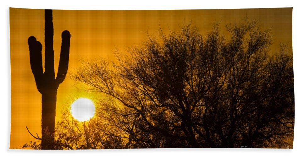 Photography Bath Sheet featuring the photograph Arizona Cactus #2 by Daniel Knighton