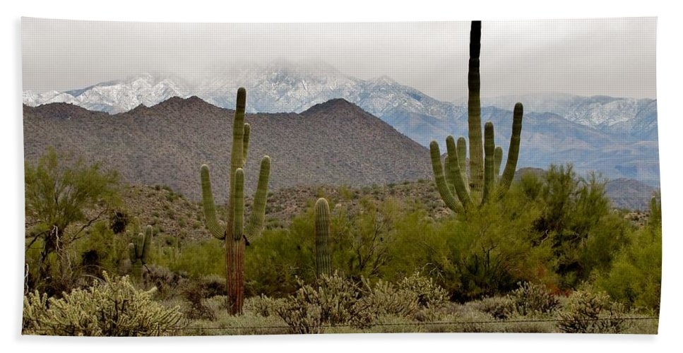 Arizona Desert Hand Towel featuring the photograph Arizona Desert Snow by Marilyn Smith