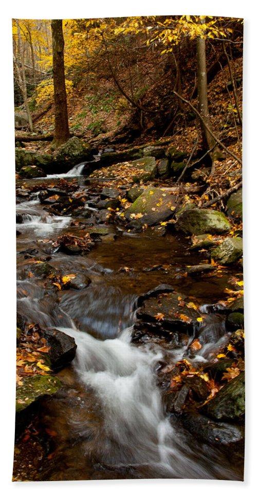 Autumn Bath Sheet featuring the photograph As The Water Runs by Karol Livote