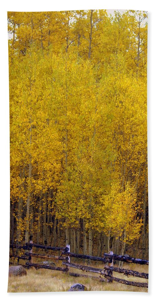 Fall Colors Hand Towel featuring the photograph Aspen Fall 2 by Marty Koch