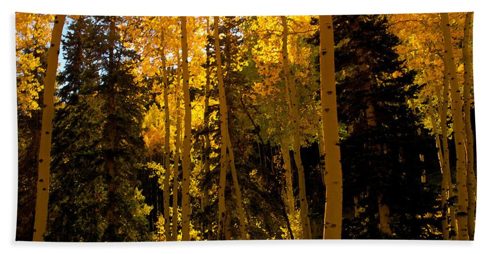 Aspen Trees Bath Sheet featuring the painting Aspens In Fall by David Lee Thompson