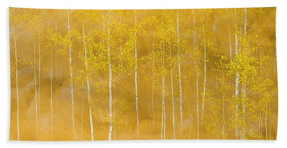 Trees Hand Towel featuring the digital art Aspens by Ralph Bonna