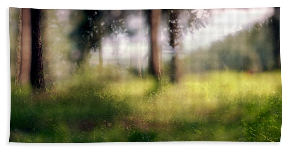 Menashe Forest Hand Towel featuring the photograph At Menashe Forest by Dubi Roman