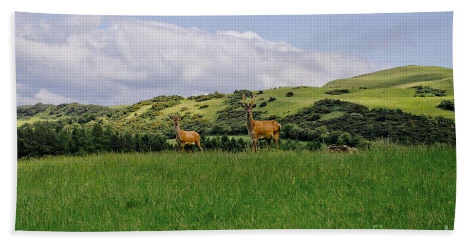 Beecraigs Bath Sheet featuring the photograph At The Hill Bottom. by Elena Perelman