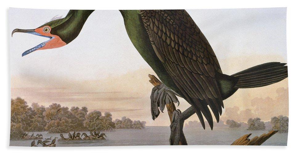 1838 Hand Towel featuring the photograph Audubon: Cormorant by Granger
