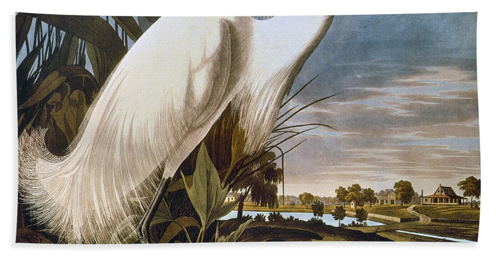 1838 Hand Towel featuring the photograph Audubon: Egret by Granger