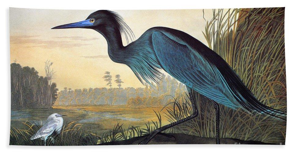 1827 Hand Towel featuring the photograph Little Blue Heron by John James Audubon