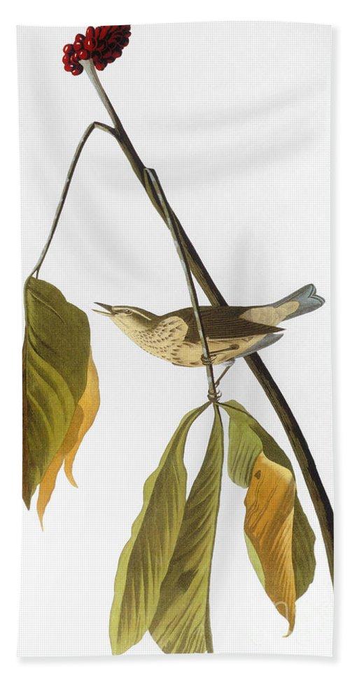 1827 Hand Towel featuring the photograph Audubon: Thrush, 1827 by Granger