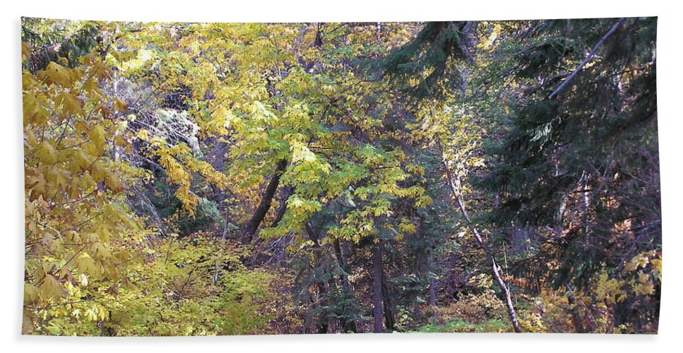 Autumn Photographs Hand Towel featuring the photograph Autum Colors by Louise Magno