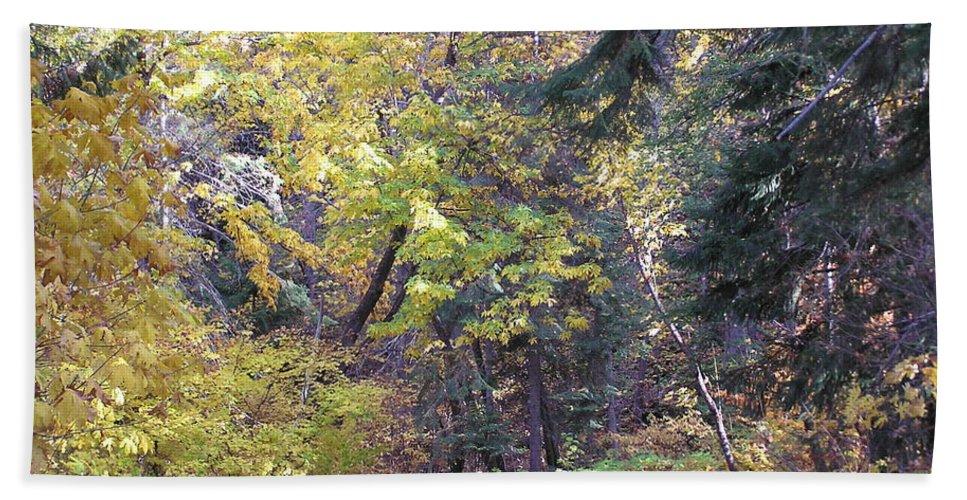 Autumn Photographs Bath Towel featuring the photograph Autum Colors by Louise Magno