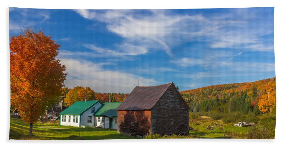 Maple Tree Bath Sheet featuring the photograph Autumn Afternoon by Tim Kirchoff