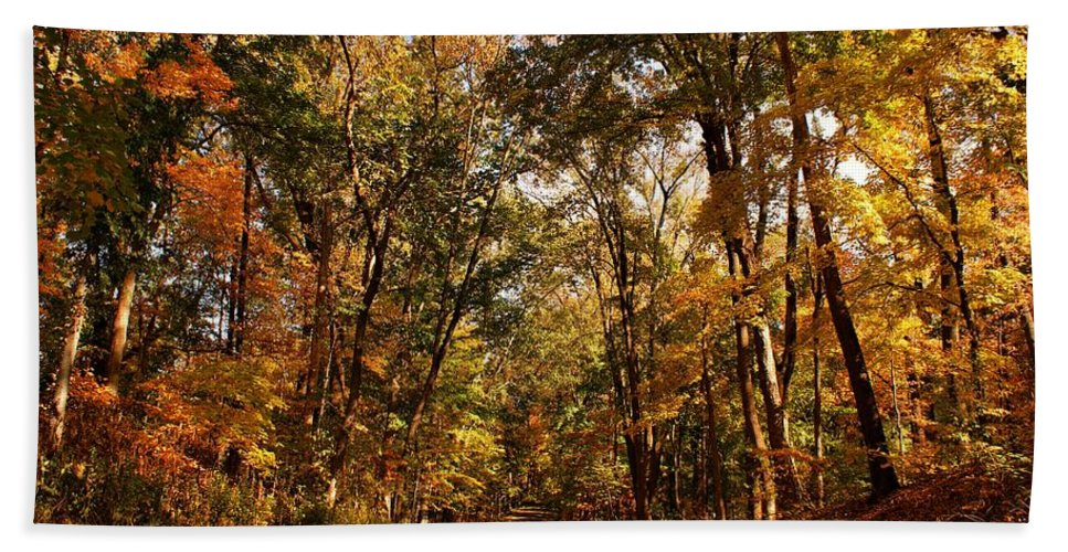 Scenery Hand Towel featuring the photograph Autumn At Audubon by Sandy Keeton