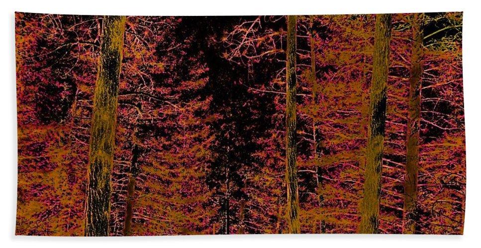 Bath Sheet featuring the photograph Autumn Aura by Dan Hassett