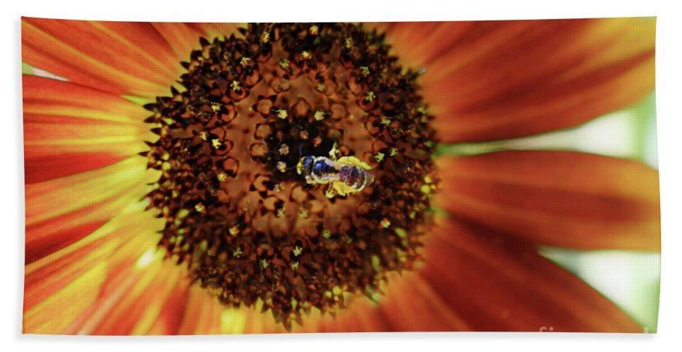Sunflower Bath Sheet featuring the photograph Autumn Beauty Sunflower by Sari Sauls