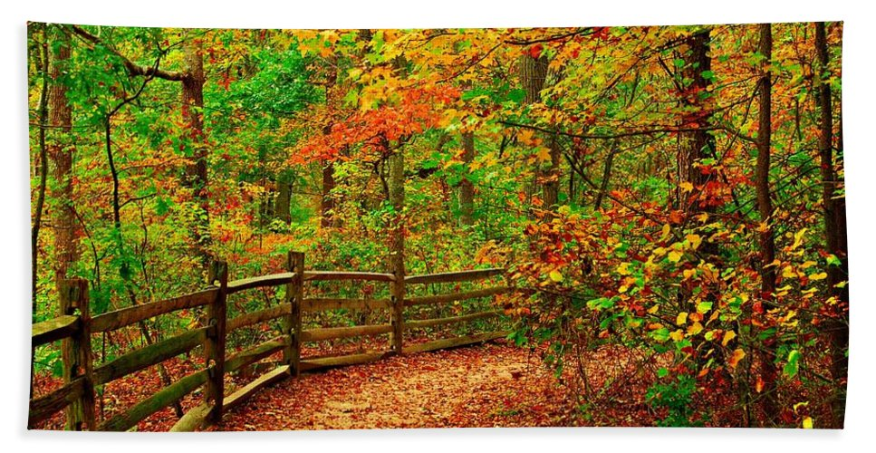 Autumn Landscapes Bath Towel featuring the photograph Autumn Bend - Allaire State Park by Angie Tirado